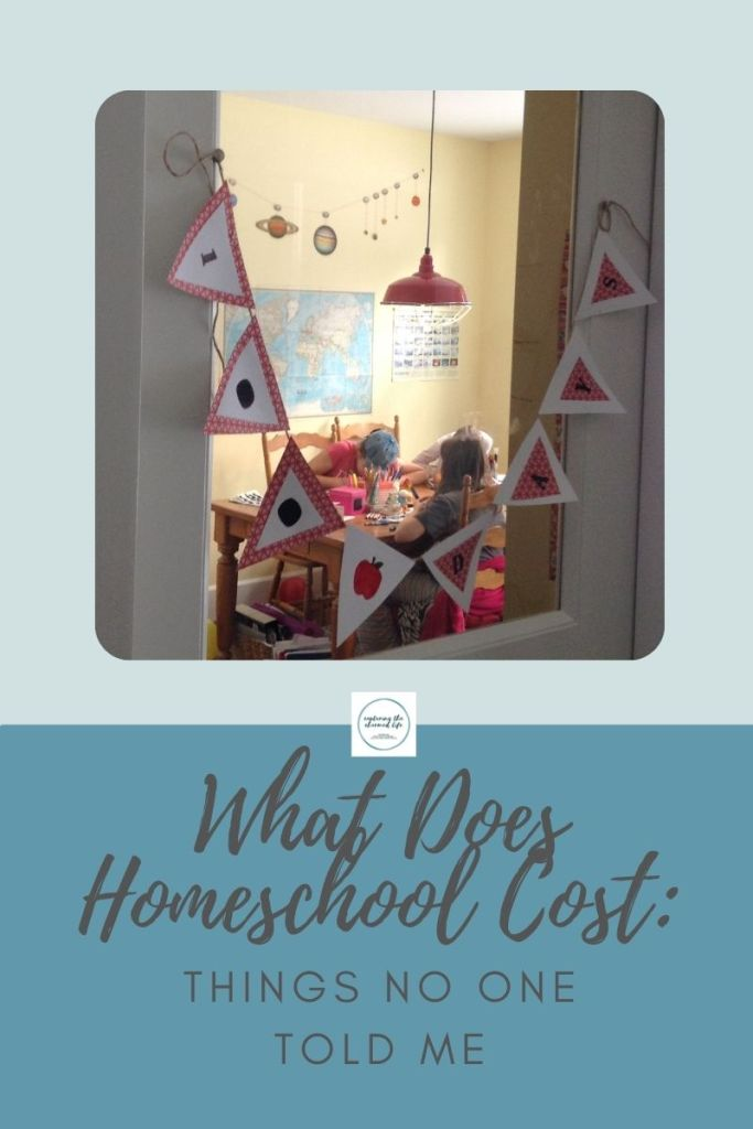 What Does Homeschool Cost Things No One Told Me