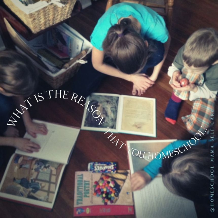 what is the reason that you're homeschooling