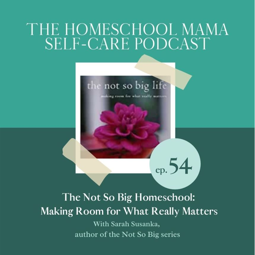 the not so big homeschool