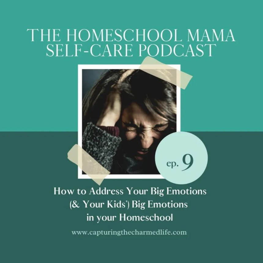 How to address big emotions in you and your homeschool