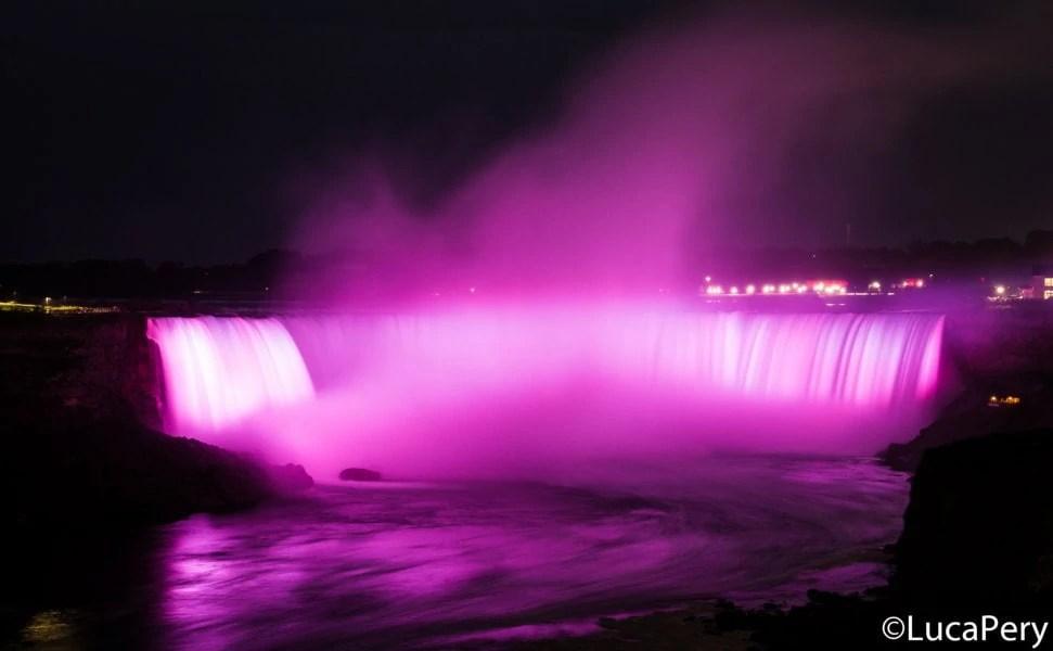 cacate del Niagara