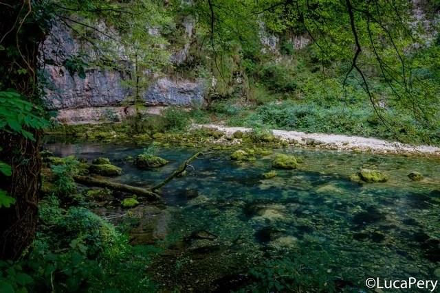 fiume oliero