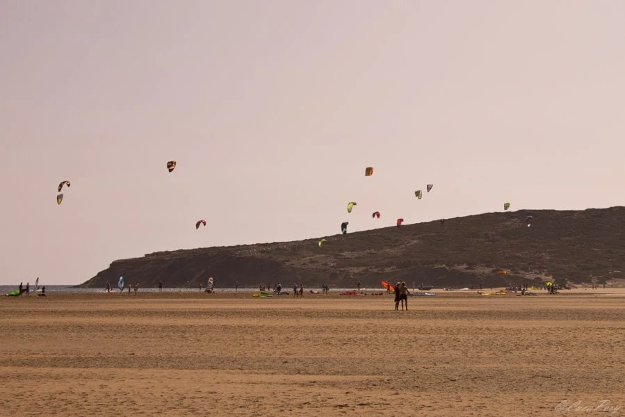 Windsurf Capo Prassonissi