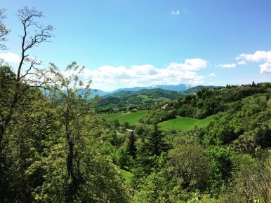 Urbino-Spring