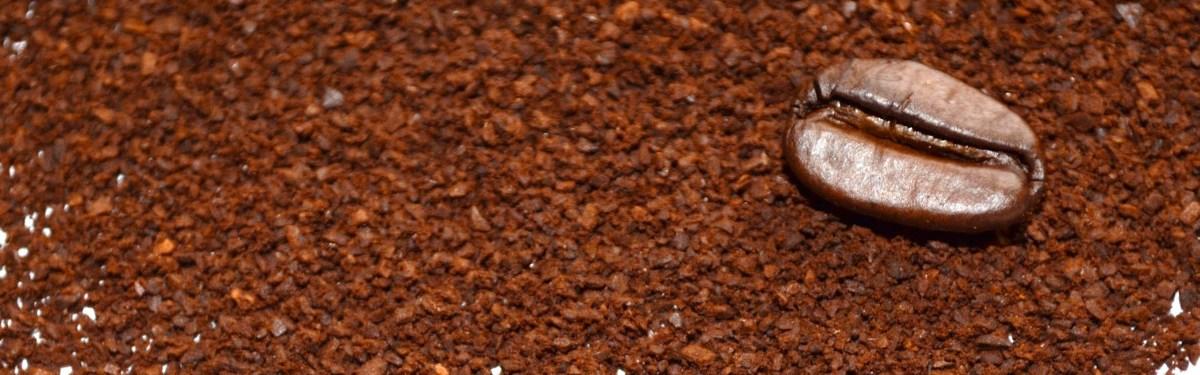 Café en grano: cómo comprar, elegir y preparar el mejor café para tu cafetera express