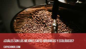 ¿Cuáles son los mejores cafés orgánicos y ecológicos?