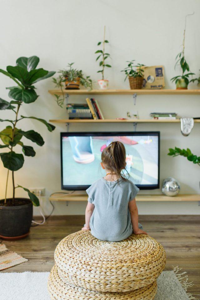 programme TV en replay : comment faire ?