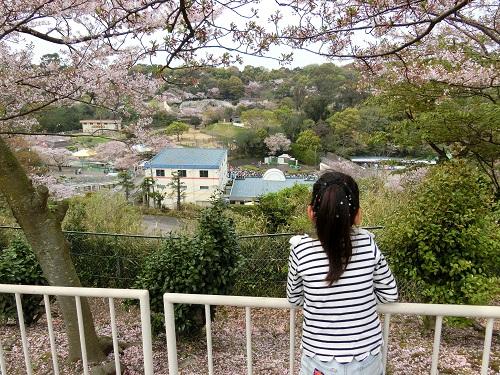 みさき公園-眺め01
