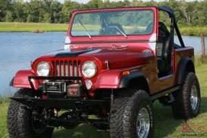 Wiring Harness Kits For Cj7   Wiring Library