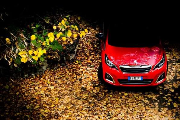 3-pic_Peugeot-108-set-foliage2_lucaromanopix-2
