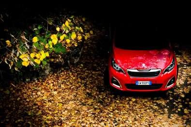 3-pic_Peugeot-108-set-foliage_lucaromanopix-2