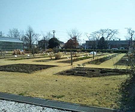 【イベント準備日記】4月イベント「内藤くすり記念館・植物園見学ガイドツアー」下見ツアー