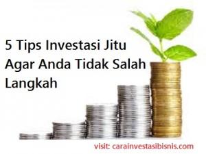 tips-investasi-jitu-carainvestasibisnis.com