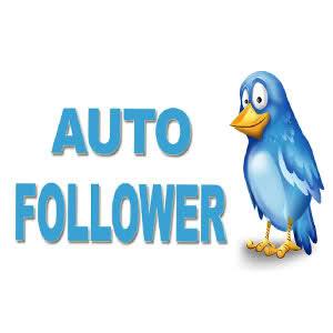 bisnis AUTO follower