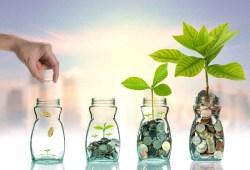 Apa Jenis Investasi Reksa Dana Paling Bagus?