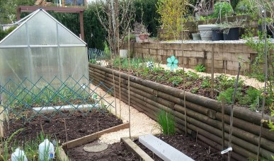 Wet spring garden with dry paths