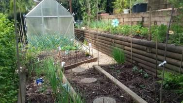 A new Spring - a new garden