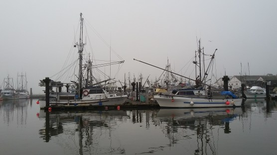 Steveston Dock, BC