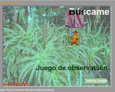 20100307125715-juego-de-observacion-.jpg