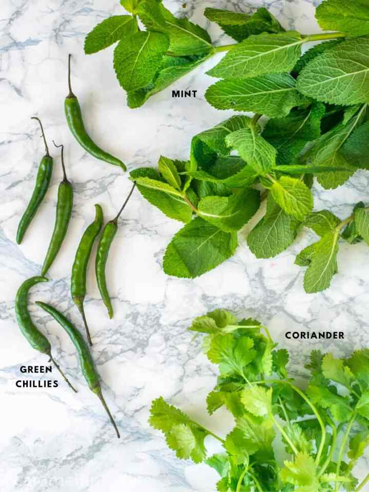 Fresh herbs in Indian cooking - Mint, coriander and green chilies