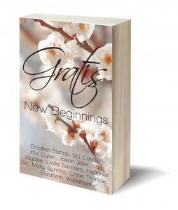 Gratis New Beginnings Erotic Anthology Due For Release 20 March 2014