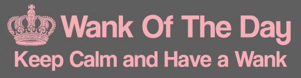 wank of the day sex blog banner