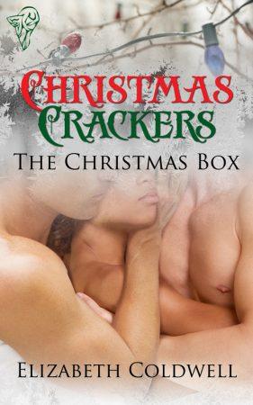 the christmas box elizabeth coldwell