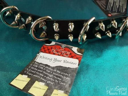 Puppy Play Spiked Leather Alpha Dog Collar Review