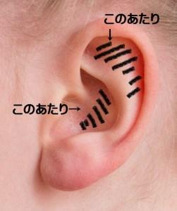 耳の汚れがたまりやすい場所