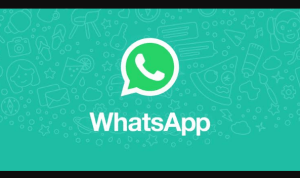 video call whatsapp web