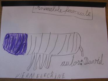 atelier Global Mindscape Animalariul universal After School Evrika (07)
