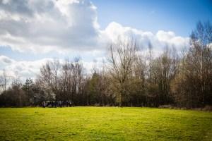 Millennium Green AGM @ Carbrooke Village Hall
