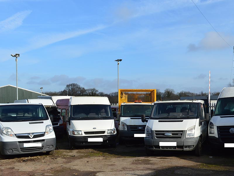 A group of white vans