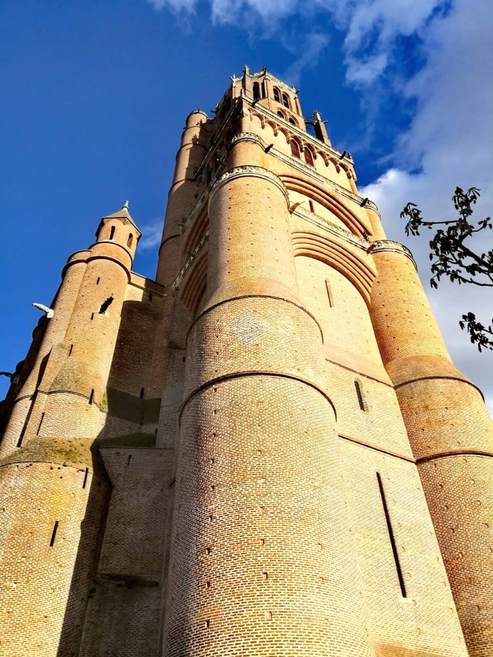 albi guided tour