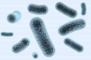 車内空間ウィルスのオゾン殺菌除菌脱臭消臭 滋賀県長浜市の車ルーム・シートクリーニング滋賀