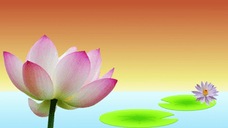 Birthday Wishes Buddhist Cards Ideal For Friends And Family