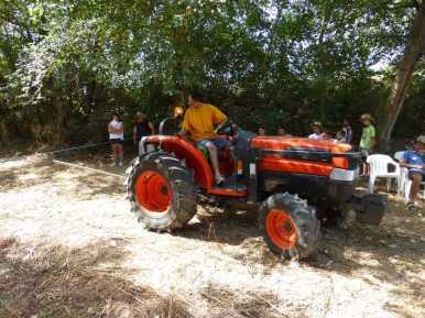 Tractorrentada 2013018