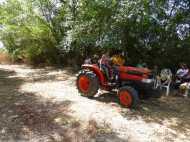 Tractorrentada 2013023