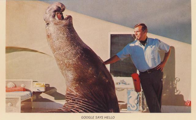 CA, San Diego - Sea World (3)