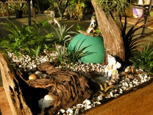 Snail shells added with a large one down in the grotto. Young Earth Stars (cryptanthus) in foreground.