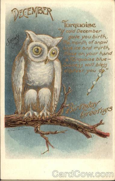 December Birthday Greetings With Snowy Owl On Branch Birthday