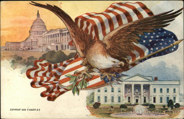 Eagle And American Flag White House And Capitol Patriotic