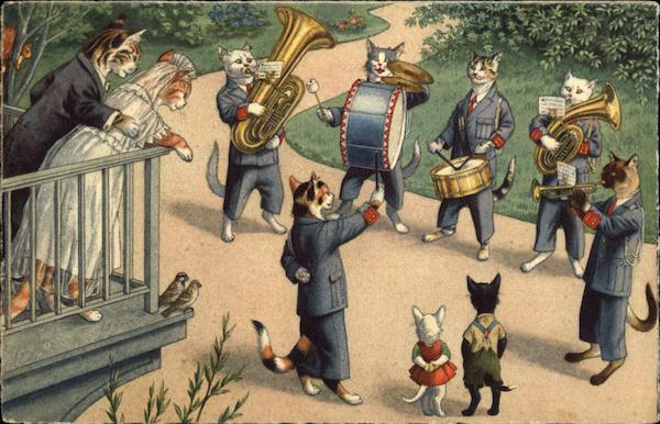 Cats Playing Musical Instruments Cats Postcard