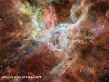 NGC2070 NEBULOSA TARANTULA