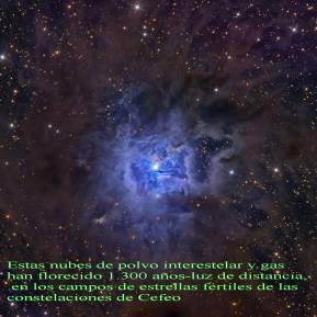 NGC7023 NEBULOSA IRIS