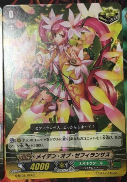 maiden of zephiranthus