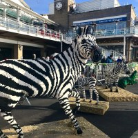 The Great Brick Safari - meet the Lego animals in Mermaid Quay Cardiff