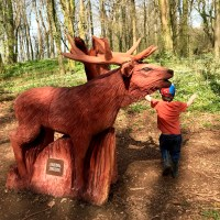 Exploring the NEW sculpture trail at Fforest Fawr Tongwynlais