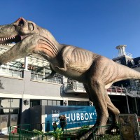 T-Rex in Cardiff Bay – the UK's largest animatronic T-Rex has arrived at Mermaid Quay