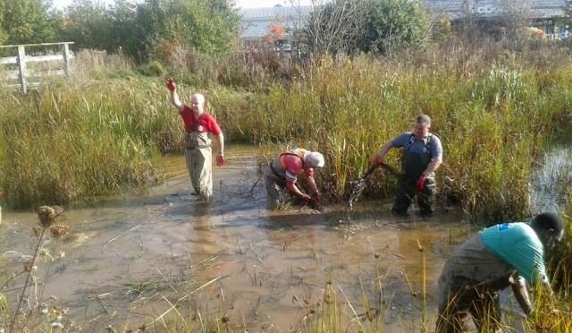 Event 115: Grangemoor Park Pond